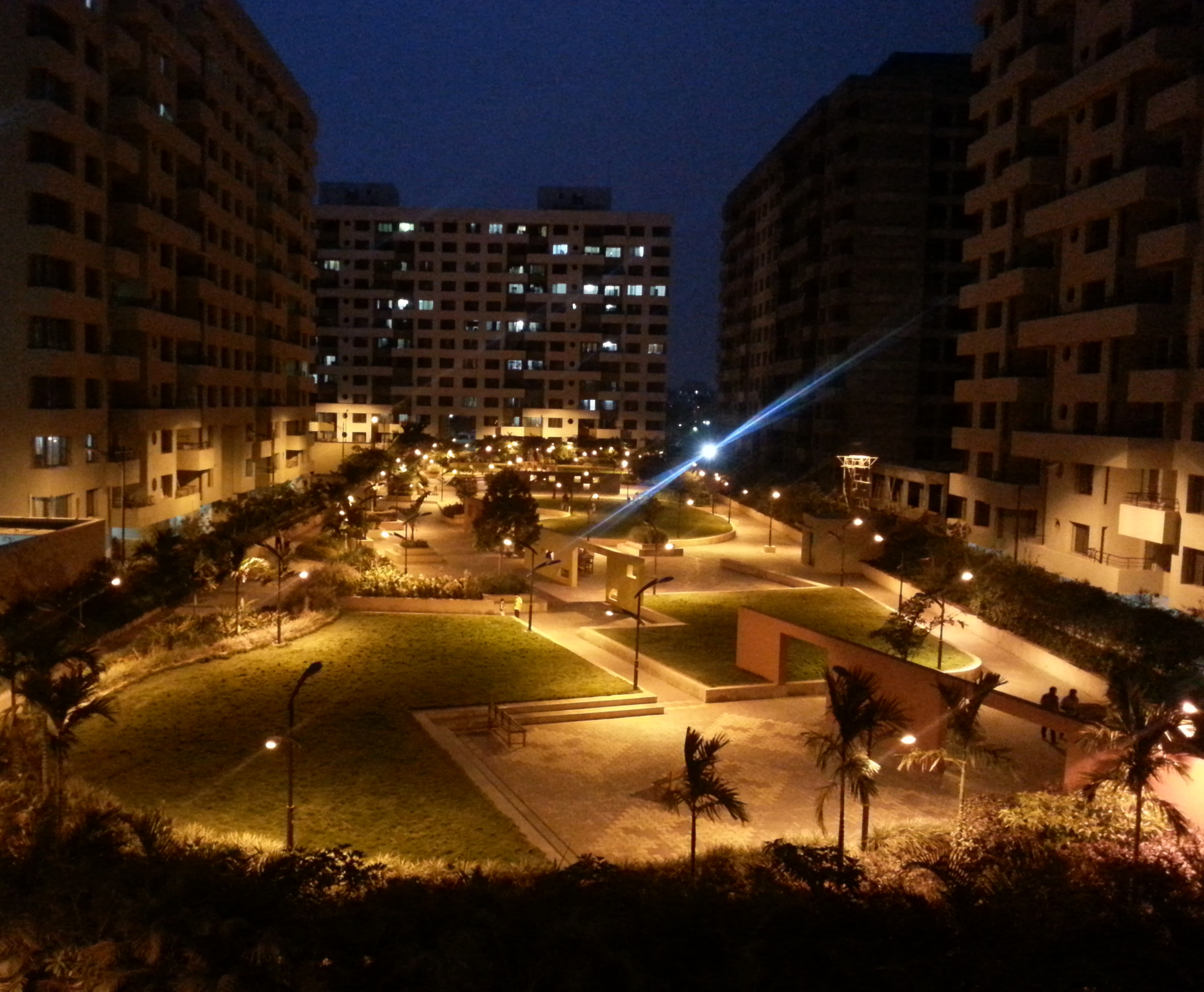 The Park - morning jogs and night walks amidst about six different flowers!